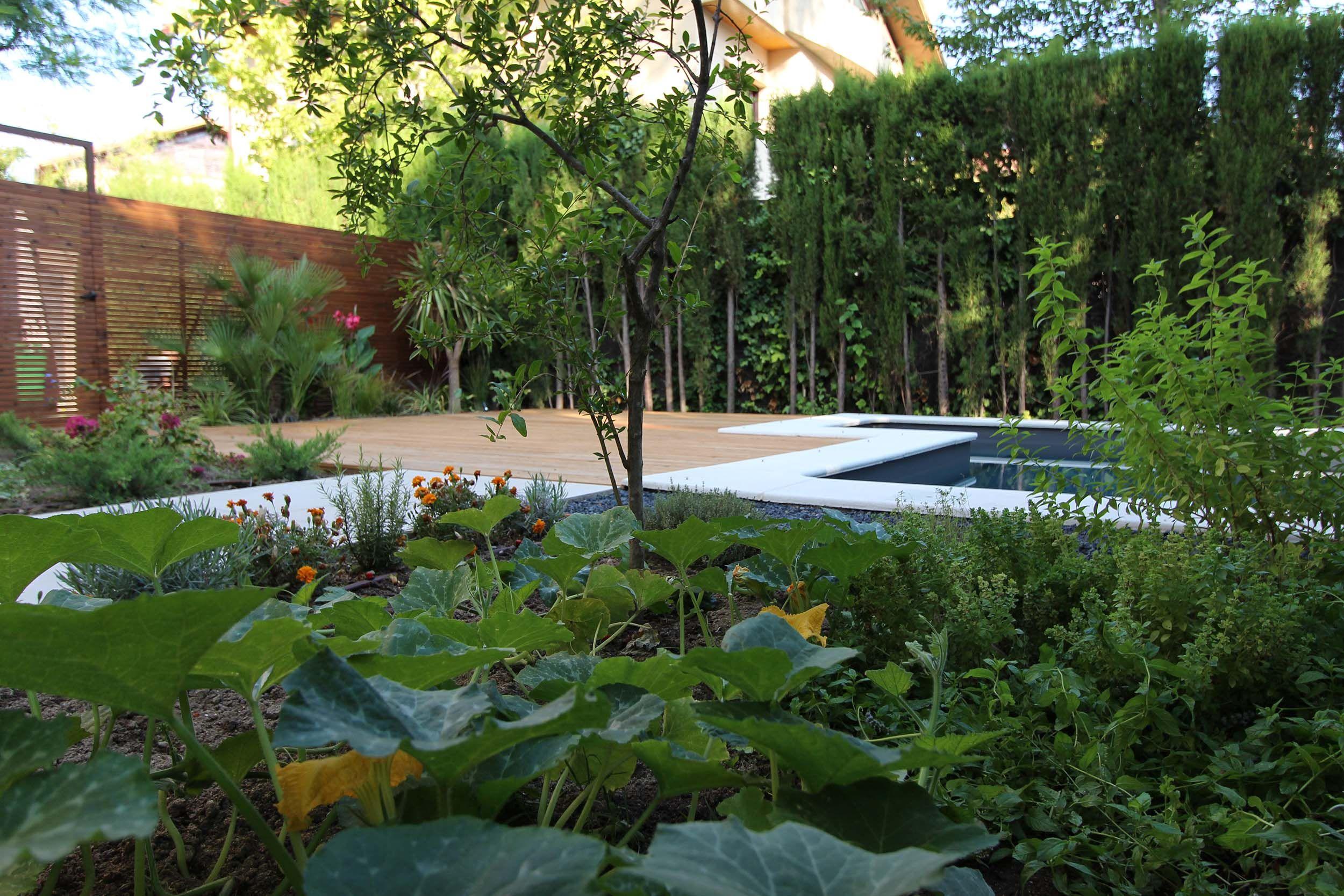 Huerto Huertoecologico Piscina Huerto Urbano Huerto Ecologico Diseño De Jardín