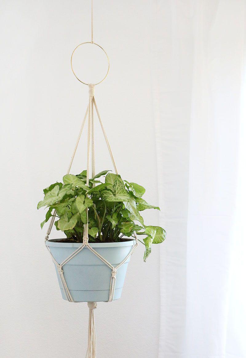 Simple DIY Macrame Plant Hanger Macrame plant hanger