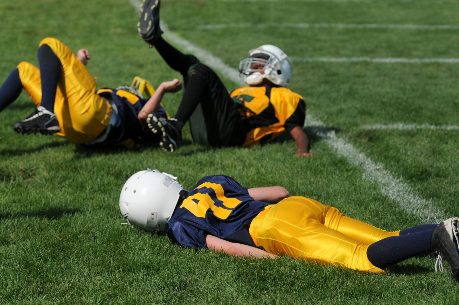 Everything we know about concussions is wrong Sports