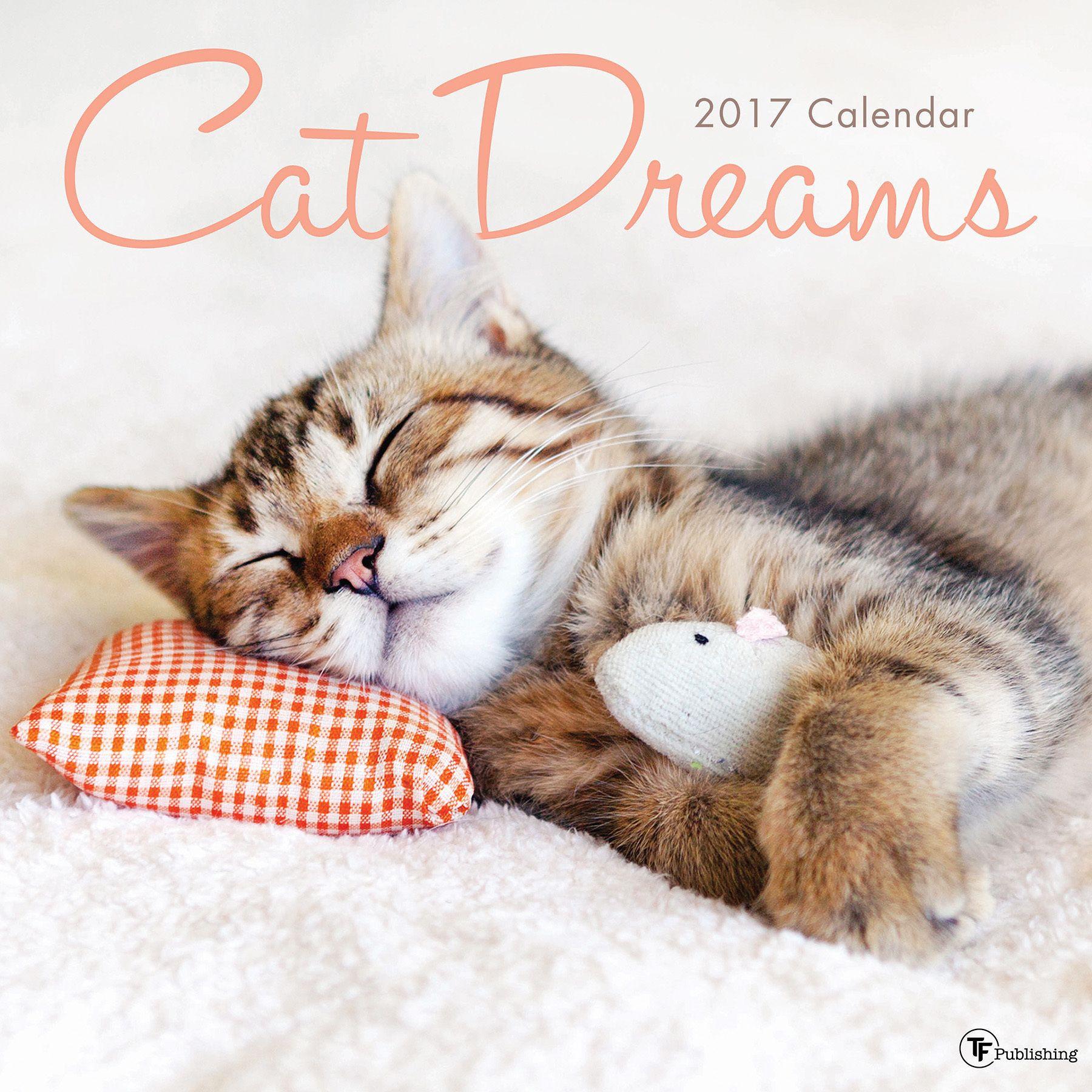 2017 Cat Dreams Wall Calendar