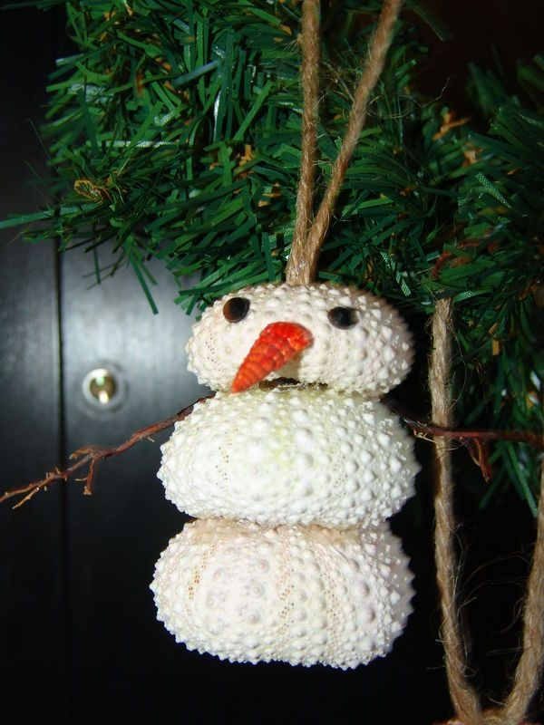 Coastal Ornaments- Sea Urchin Snowman with Shell Nose, and Sea Fan Arms- Great for Christmas and Holiday Decorating - product images  of