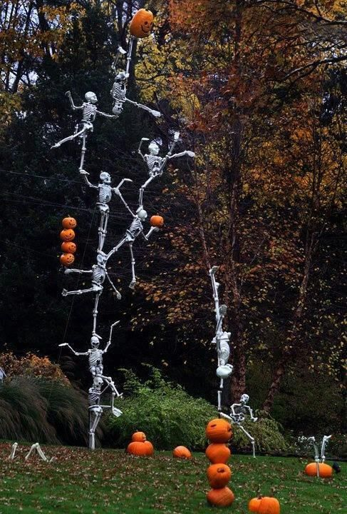 Outrageous Halloween Homes 13 Skeletons Halloween Outdoor Decorations Halloween Outside Halloween Yard