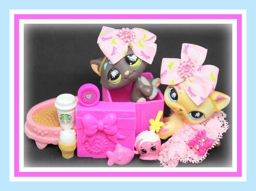 â ï Authentic Littlest Pet Shop Lps 815 816 Paint Splatter