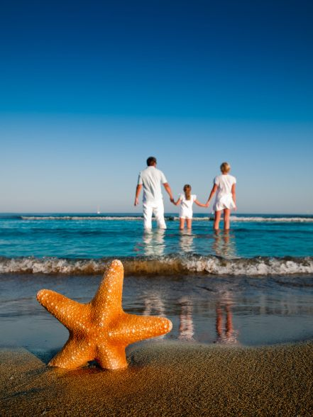 Starfish in sand family holding hands on beach in water