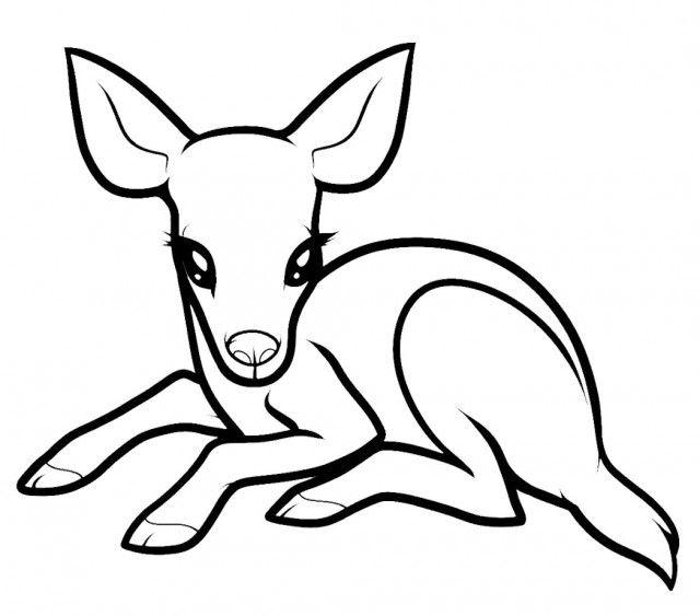 Baby 20deer 20coloring 20pages Deer Coloring Pages Animal Drawings Easy Animal Drawings