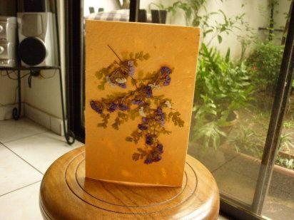 Recopilación de mis trabajos hechos con flores secas o prensadas - flores secas
