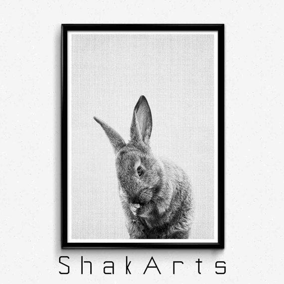 Baby bunny print rabbit print black and white baby by shakarts