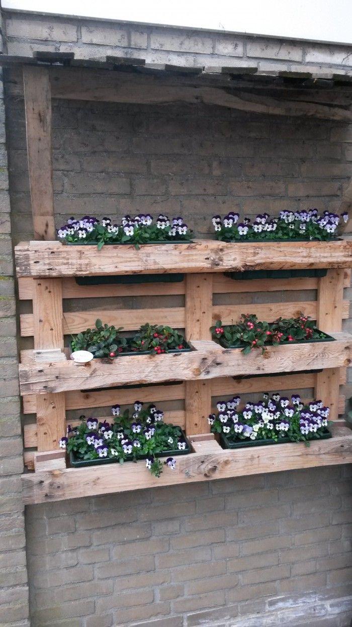 Hedendaags Plantenbakken van pallet :-) | Tuin pallet, Tuin, Tuin decoratie WS-79