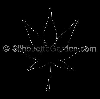 Japanese Maple Leaf Silhouette Leaf Silhouette Silhouette Clip Art Silhouette