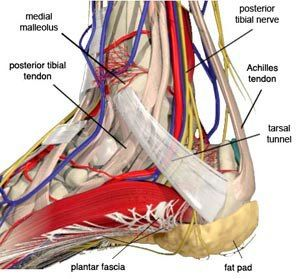 TARSAL TUNNEL SYNDROME. I have this and it REALLY makes simple things difficult for me. Complicates my life a lot.