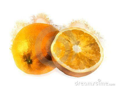 Oranges Watercolor Painting Watercolor Fruit Watercolor