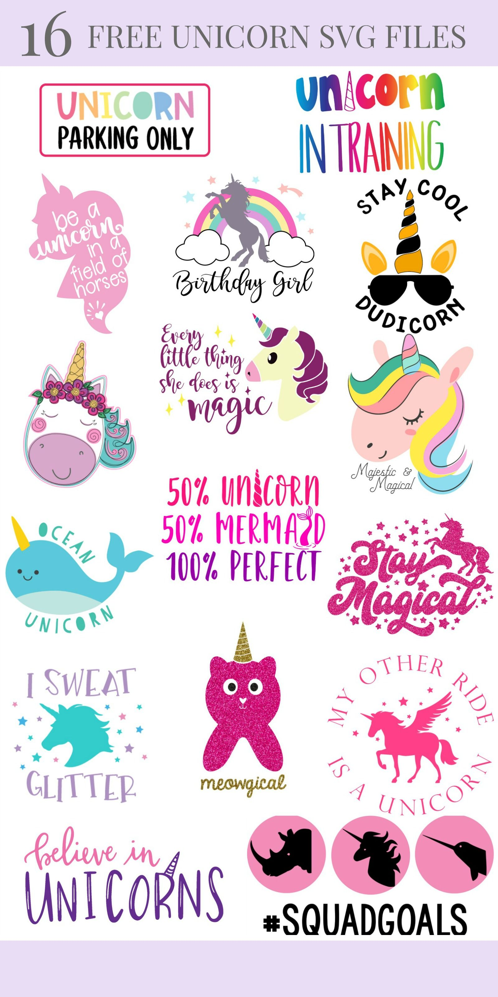 14 Free Unicorn SVG Files Including Meowgical Caticorn Cut File