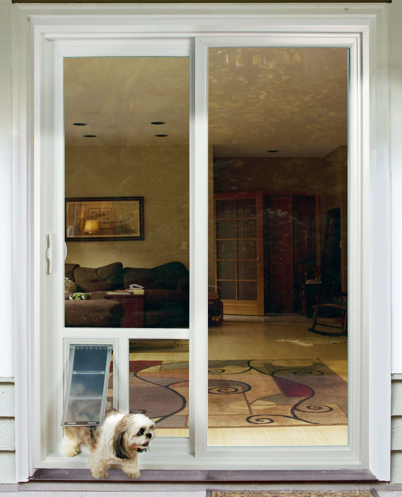 Door Pet Door Idea For Glass Door In Natural Wood Frame Door Within