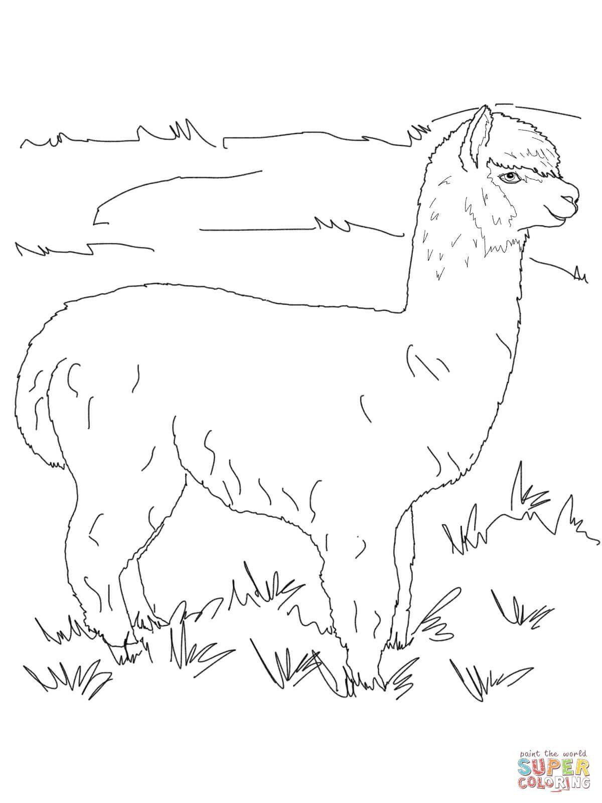Cute Llama Coloring Pages Super Cute Alpaca Coloring Pages Coloring Book Art Coloring Pages Alpaca