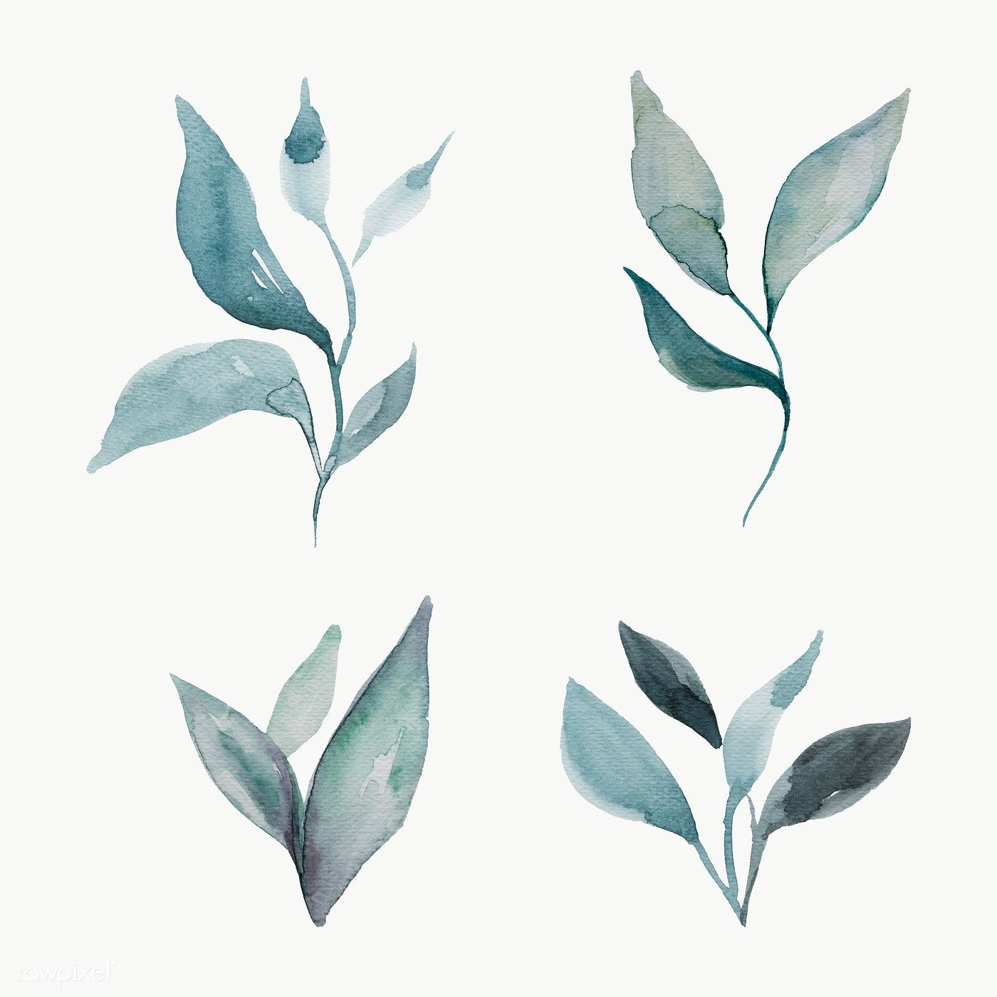 Download Premium Png Of Hand Painted Watercolor Leaves Transparent