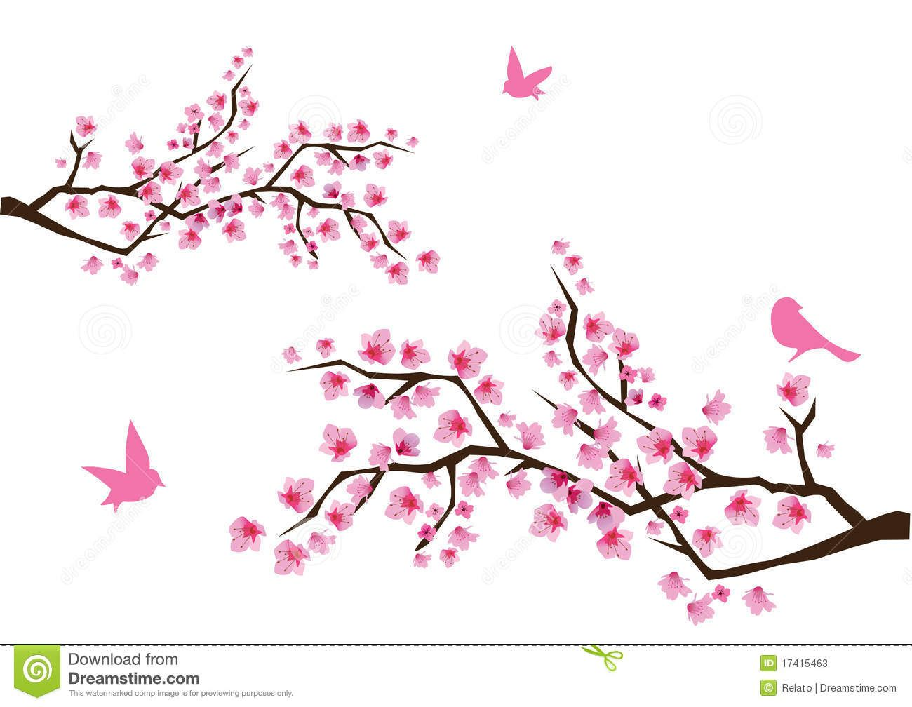cherry blossom branch - photo #45