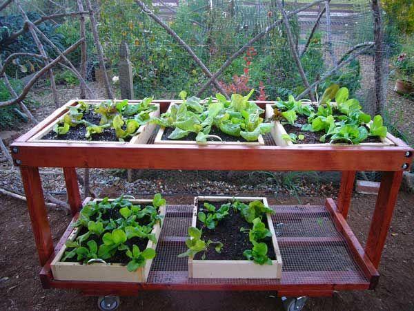 construire une table de jardin mobile pour votre potager cr as au jardin pinterest jardin. Black Bedroom Furniture Sets. Home Design Ideas