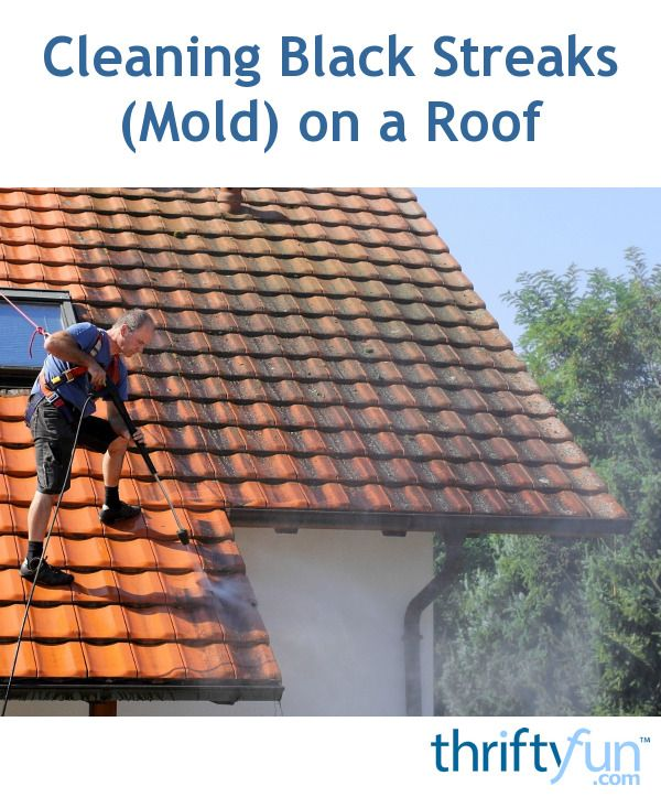 Cleaning Black Streaks Mold On A Roof Roof Cleaning Roof Restoration Roof Architecture