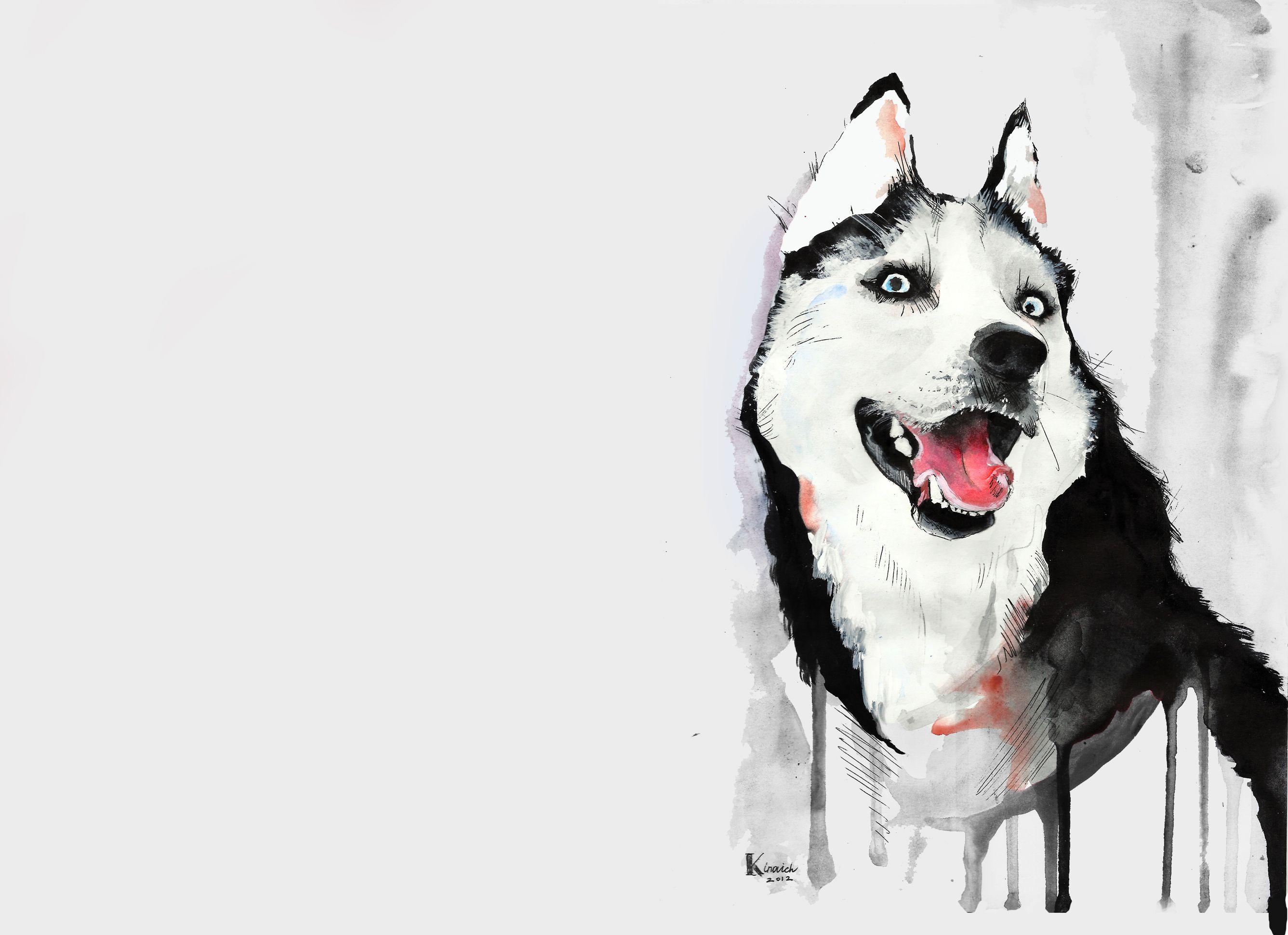 Husky with watercolors./ Husky con acuarelas. | ~Dibujos que ...