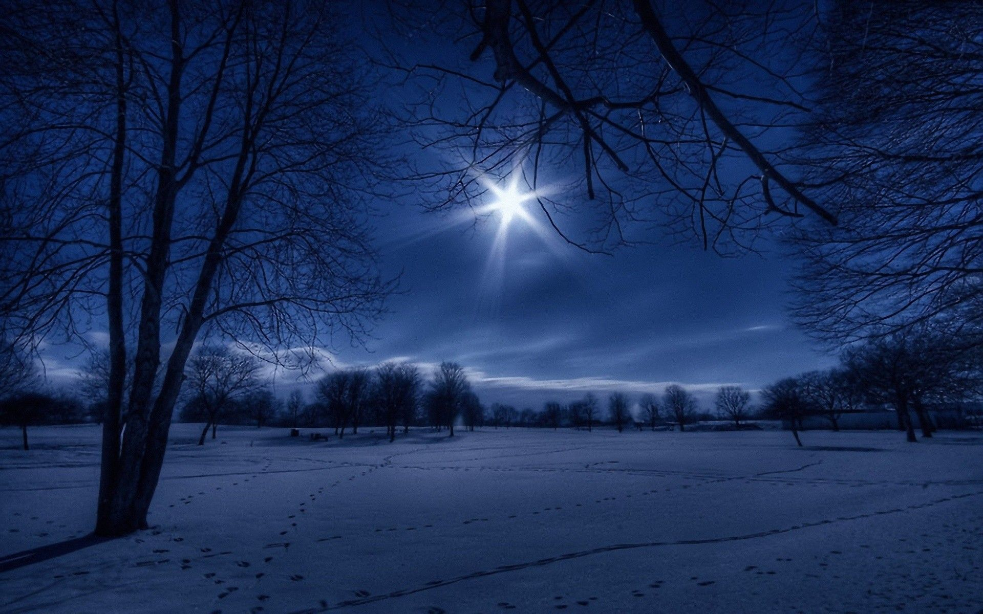 moonlit night~ | winter night, moonlight and winter wallpapers