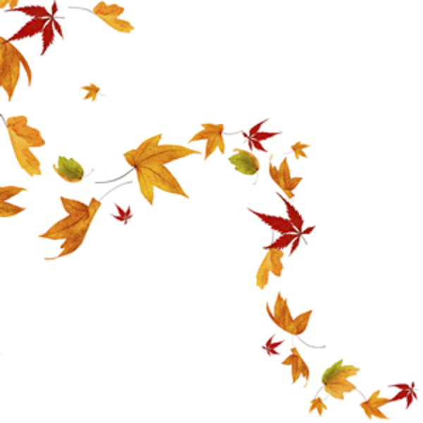 Image Result For Autumn Leaves Blowing Clip Art Art Leaf Tattoos