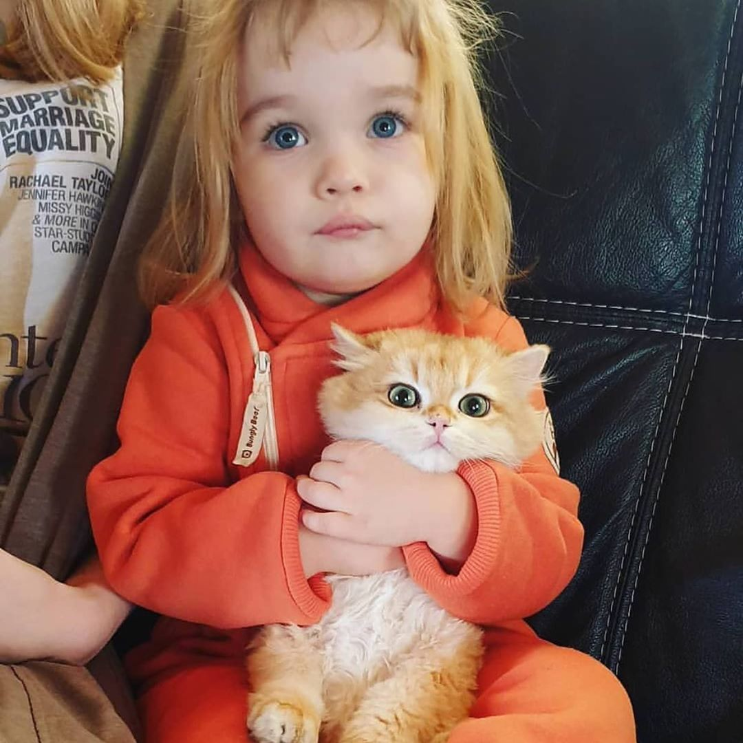 Too Much Cuteness In One Picture But I Hope You Guys Love It Follow Bestcatmerch Follow Bestcatmerch For Animals Beautiful Cats Kittens Cutest