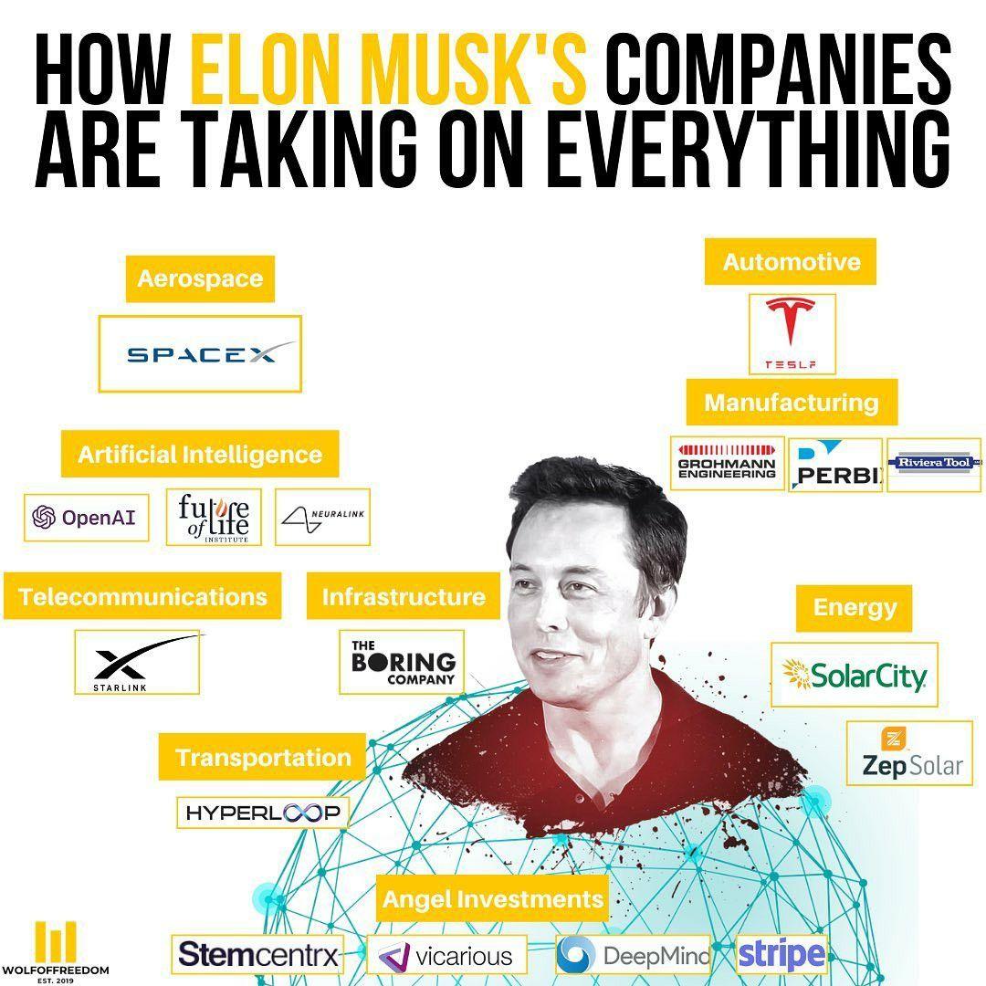 Elon musks companies taking over worldwide in 2020