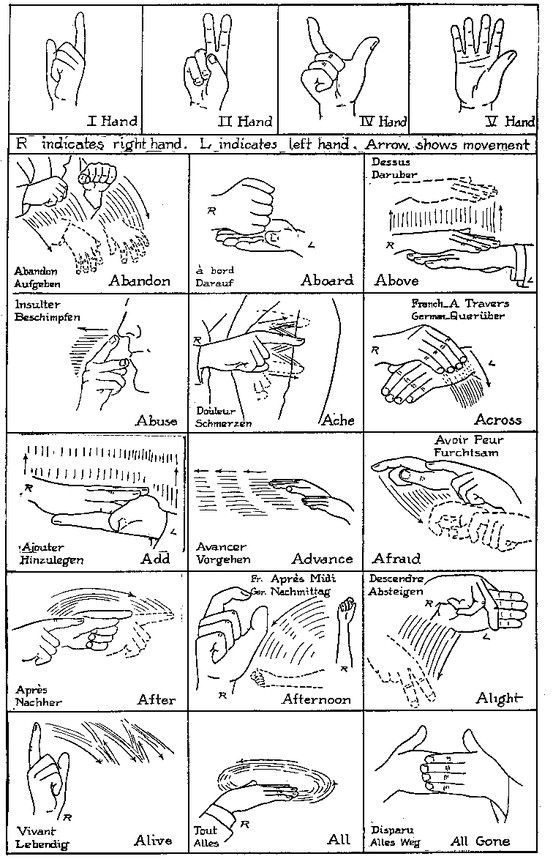 Wolf Elective 1d Native American Sign Language (Lots and