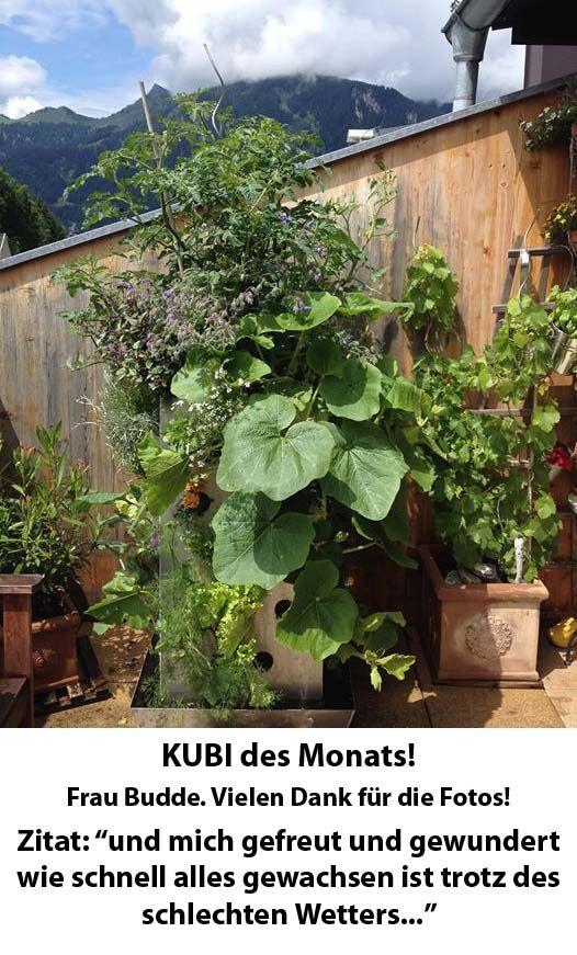 KUBI des Monats 2015-02 Frau Budde. Herzlichen Glückwunsch! #KUBI #fotowettbewerb #hochbeet #vertikal #gemüseanbau #balkon #dachterrasse