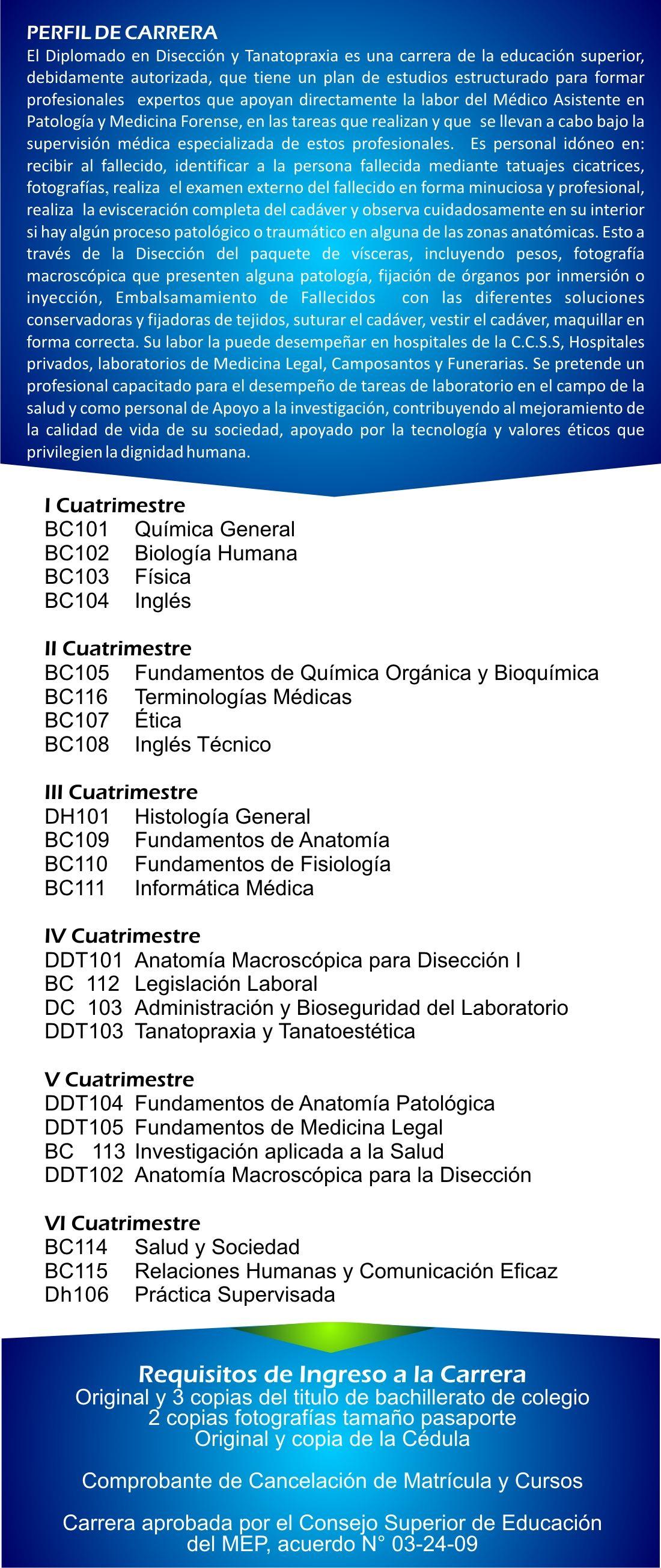 Fantástico Anatomía Línea Acreditada Y Curso De Fisiología Con El ...
