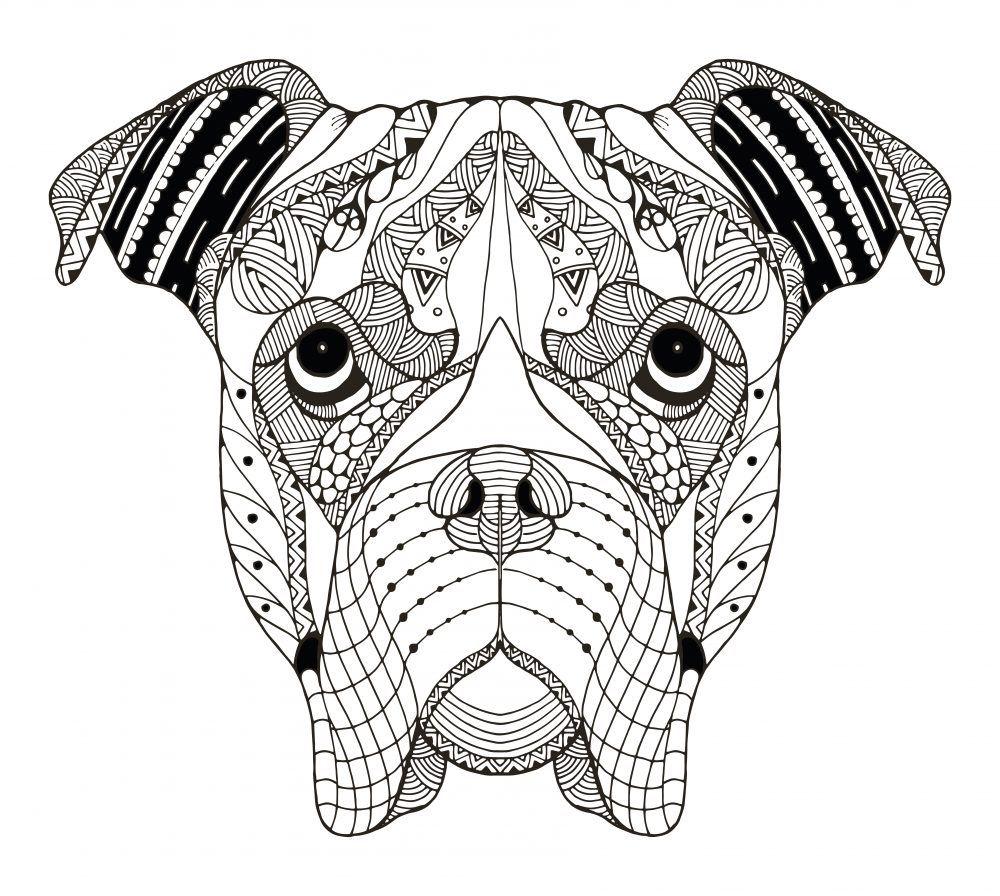 Mandalas De Perros Debudanet Boxer Dibujo Ilustración