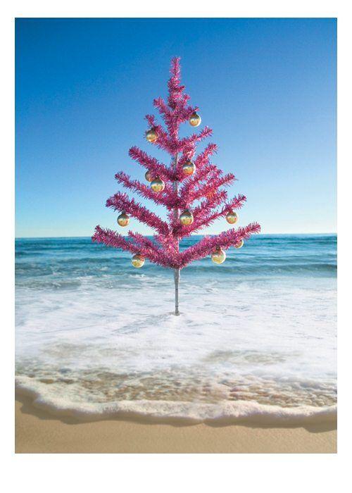 Pink Tree at Beach http://www.palmpressinc.com/product/pink-tree-at-beach/