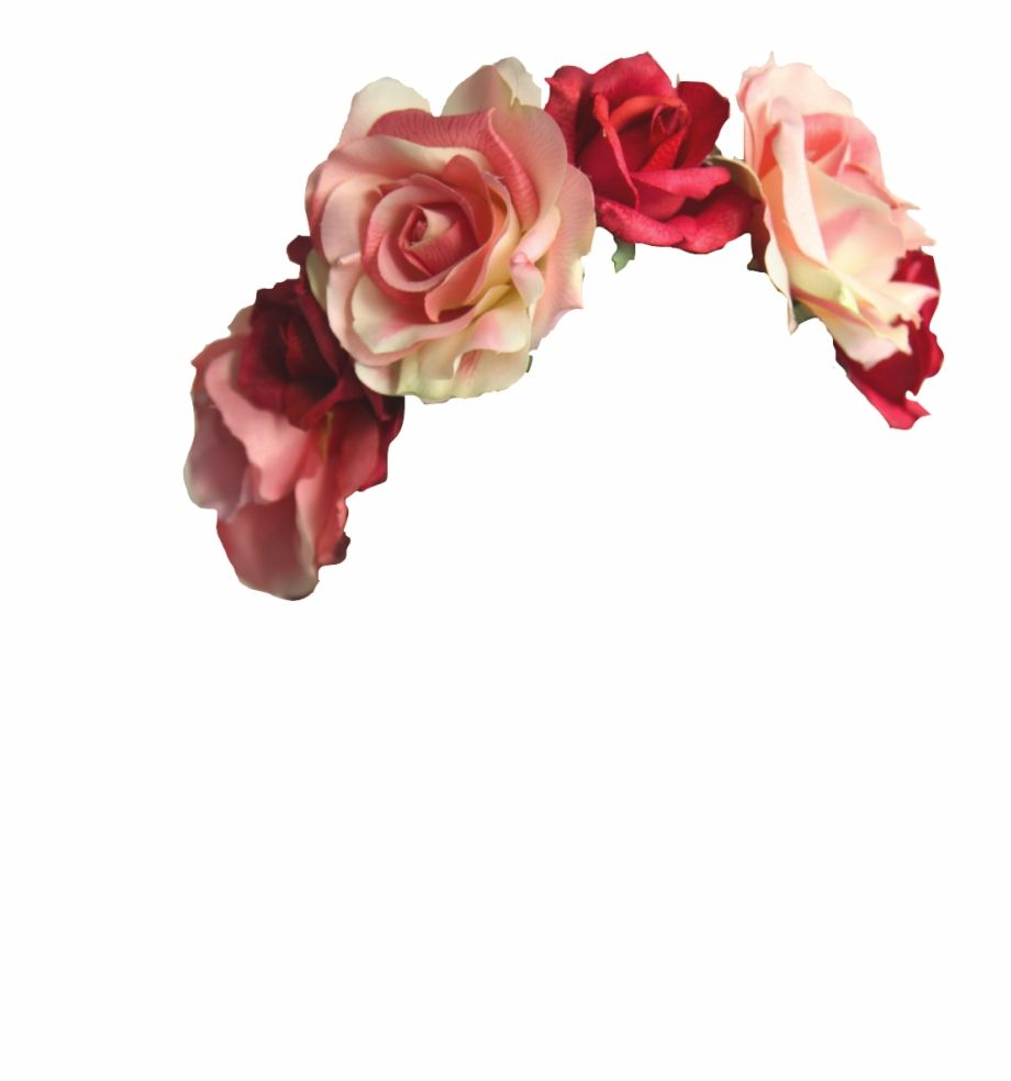 32 Images About Flower Crowns On We Heart It Cute Flower Crown Transparent Hd Png Download Is A Free Transpa Flower Png Images Flower Aesthetic Flower Crown