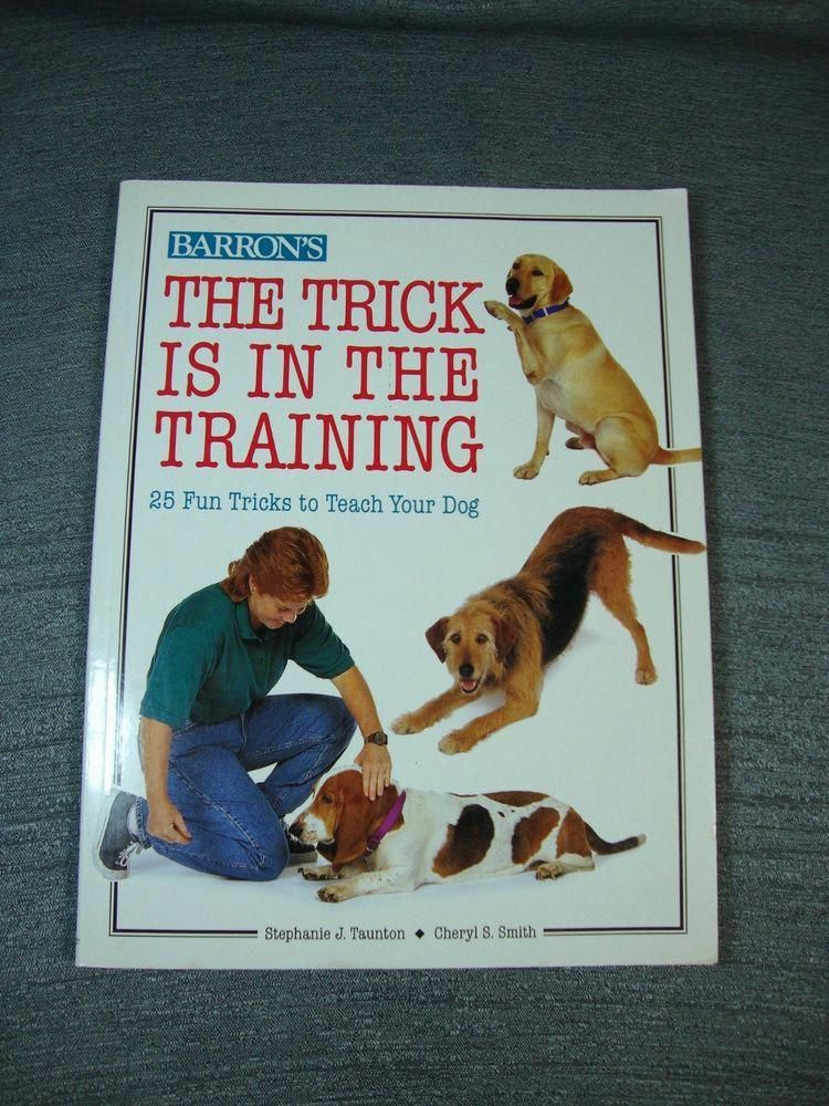 Help And Ideas For Cool Dog Training Be Described As A Great Dog