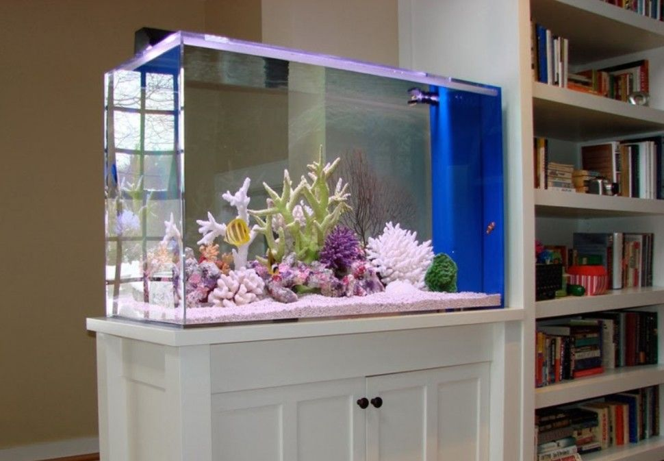 fish tank stand design ideas office aquarium. Brilliant Built In Bookcase Plus White Cabinets Under Contemporary Fish Tank As Wall Divider Design Ideas Stand Office Aquarium K