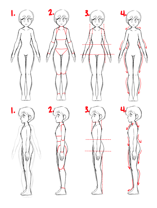 Anime Anatomy Tumblr Female Anatomy Human Drawing Girl Anatomy