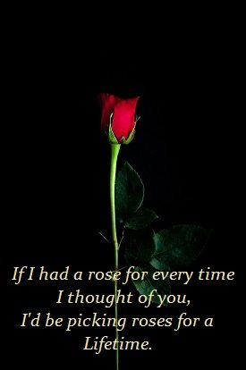 what is the meaning of a single red rose