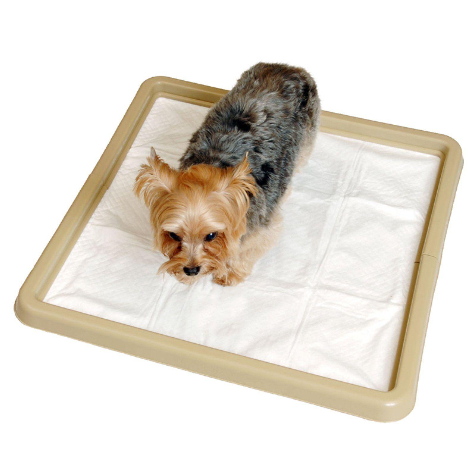 Petmate Little Stinker Housebreaking Pad Holder Pet Mat Puppies