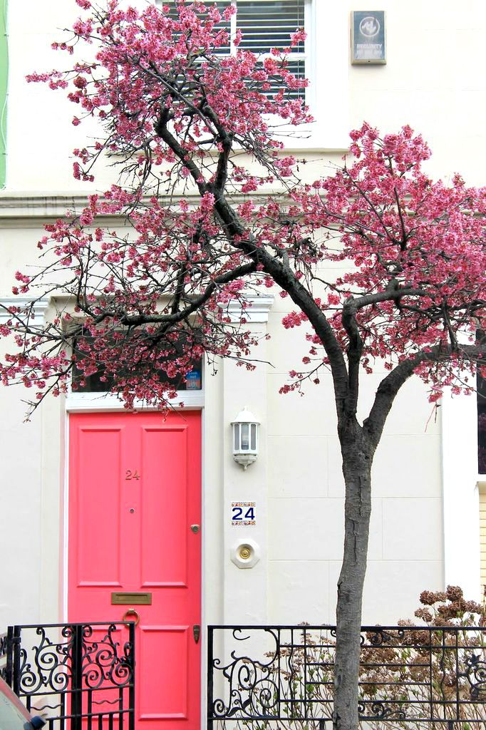 notting hill london pink door | Colour | Pinterest | Notting hill ...