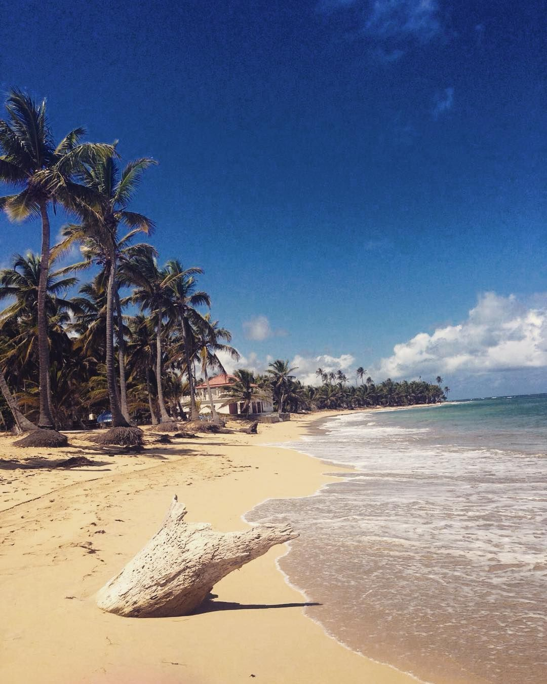 Stroll Down The Beach At Breathless Punta Cana