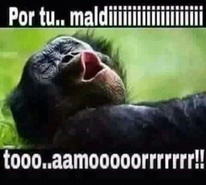 Con Sentimiento In 2020 Mexican Funny Memes Memes Funny Faces Funny Spanish Memes