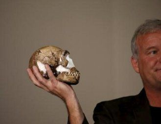 One of the current model holding a reconstructed Homo naledi skull.