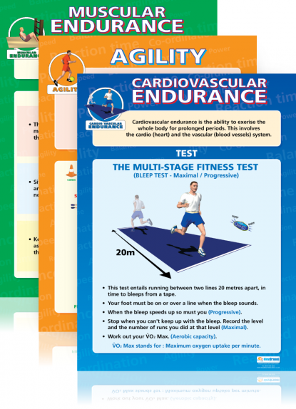Set Of 12 Components Of Physical Fitness Posters