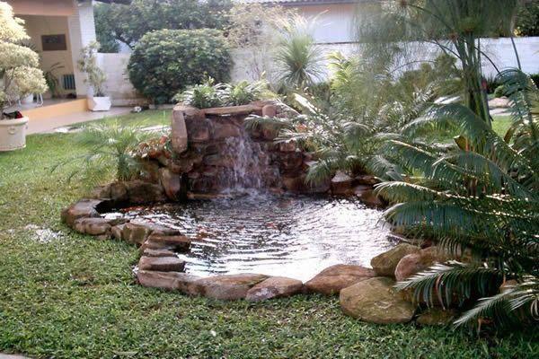 Peixe vida lagos ornamentais fontes peixes e aqu rios - Estanque terraza piso ...