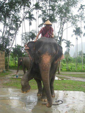 Elephant Hills Tented C& (Khao Sok National Park Thailand) - Hotel Reviews - & Elephant Hills Tented Camp (Khao Sok National Park Thailand ...