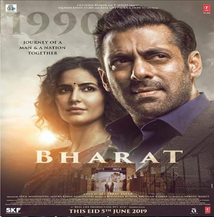 Bharat 2019 Hindi HDRip 480p 720p TopSkyMovies Bollywood