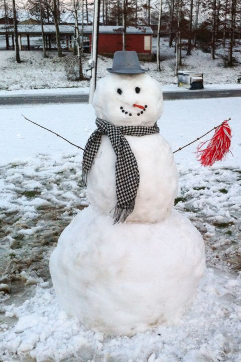 Real Snowman