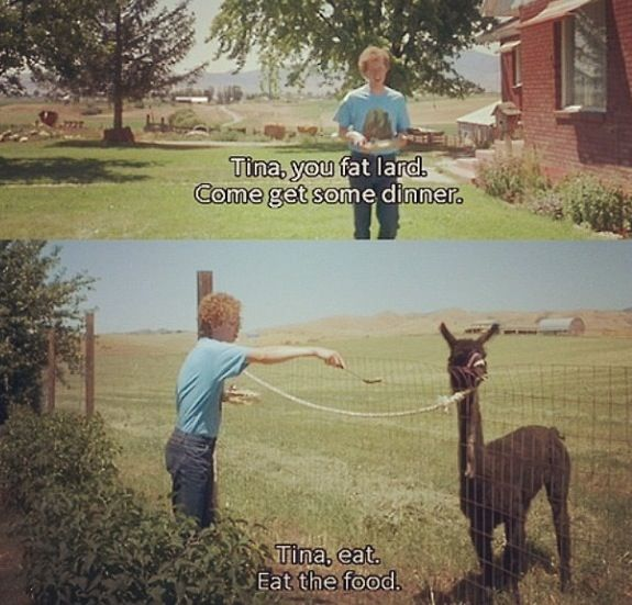 Napoleon Dynamite Haha Best Movie Ever Randommmm Napoleon