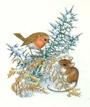 Illustration by Molly Brett. A robin and mouse contemplate one another amongst some snow covered gorse and bracken.