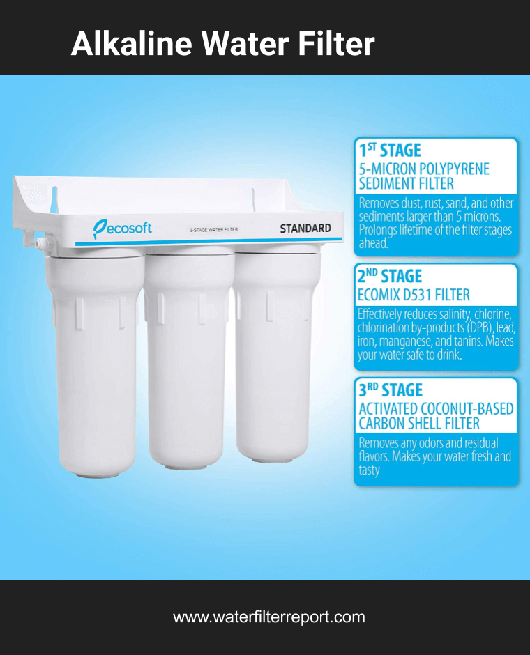10 Best Countertop Filter That Removes Fluoride Home Water Filter Reports Best Water Filter Filters Alkaline Water Filter
